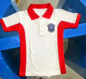 School Polo shirts in Dubai with logo embroidery for cheaper price - United Arab Emirates